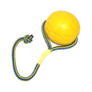 Pallina Swing'n Fling Durafoam M 2