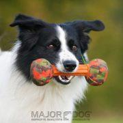 Major_dog_barbell_small_dog