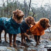 Impermeabile Hurtta Monsoon Coat (4)