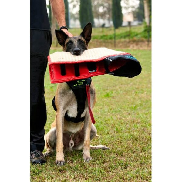 Manica Sporthund Balance (4)